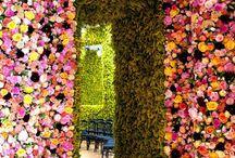 Flower Bridal ideas