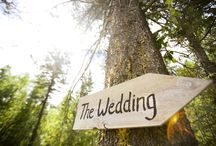 Wedding Tips / So she said yes! Congratulations, but now what? All you need to know about weddings...