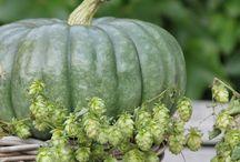 Beaux fruits beaux légumes