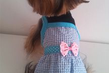 Vestidos para perrita / Coquetisimos vestidos para perritas de tamaño pequeño, toy, miniatura o cachorritas, chihuahuas, bichon maltes, yorkshire terrier, bichon frise, crestado chino, mestizos pequeños
