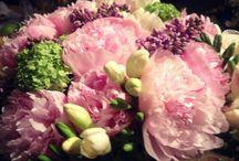 Flowers by Yalo
