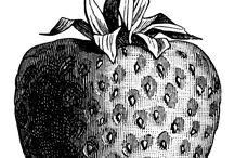 Gyümölcs,zöldség