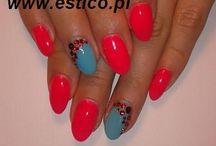 Nailsart Ev