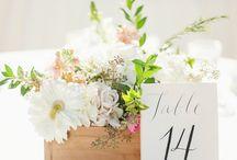Diana's wedding / Ideas for old friend's wedding
