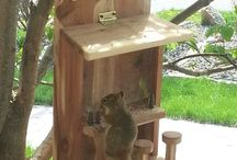 bird houses/squirrel feeders