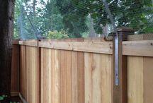 Cica kerítés