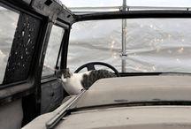 Renowacja - VW T3 Dehler