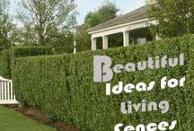 Plant fences