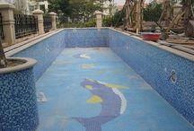 Swimming Pool Tiles in Maharashtra