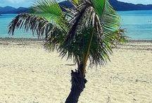 Hamilton island holiday