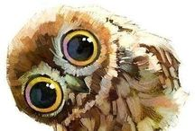 Owl Paintings