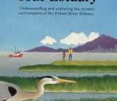 Rivers, Oceans, and Estuaries