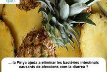 Pinya / Piña  / Aquí trobaràs curiositats sobre la pinya / Aquí encontrarás curiosidades sobre la piña