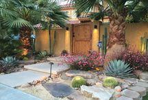 Jardim desertico