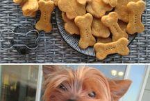 dog food ideas