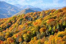 Great Smoky Mountains / Re-pins of photos from our Great Smoky Mountains