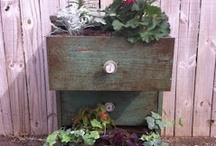 Gardening / by Donna Scheuer