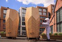 beekeeping design