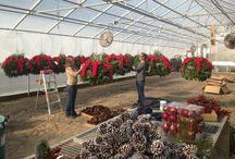 Holidays at Winterberry! / Holiday decorations for some of our commercial clients