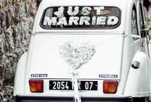 Podróże poślubne / Ślub Pełen Miłości to wyjątkowy projekt dla zakochanych par młodych. Pięknie zamienia marzenie o wielkiej miłości na gest, który zmienia życie potrzebujących. Dowiedz się więcej: www.slubpelenmilosci.pl