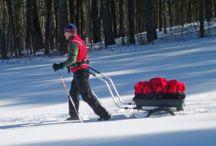 Winter Cabin Cargo