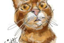 Pet Cat Portraits / Pet cat Portraits