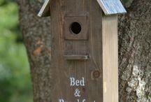 Bird house ideas