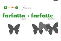 Italian noun rules