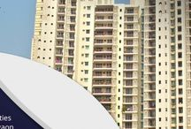 All projects of DLF