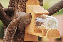 Bird Feeders & Bird Houses