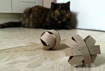 Kids / Cat toy