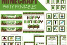 Minecraft party LF