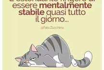 Gatti che Gente !!!!!!!