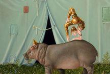Suzan Visser / Suzan Visser által készített vízilovas festmények.  Hippo paintings by Suzan Visser.