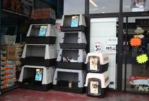 Nuestra tienda / Alguna fotos de nuestra tienda
