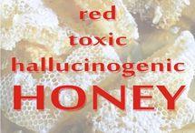 Himalayan Red Honey