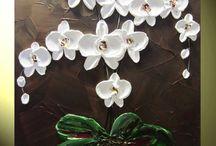 Plants - Orchids
