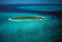 Heron Island / Visit our site www.snorkelaroundtheworld.com Build up our snorkeling community :)