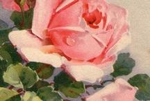 Vintage Floreale