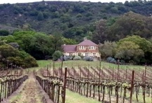 Sonoma County WIneries We Visit