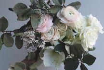 flora | bouquet