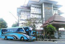 Big Bus Seat 50 / Bus Pariwisata 50 Seater