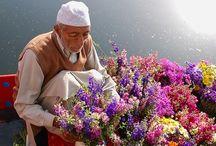 Fun stuff for flower-lovers