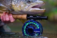 Angling <Pescuit>