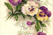Vintage flowers, birds