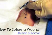 how to suture a wound-human or animal