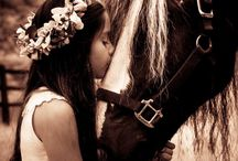 Caballos / Amor por los caballos
