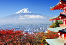 Magical Japan / All bout travelling to Japan. Come and share your travel experiences.