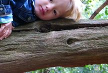 Preschool - schemas/urges