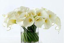 ALCATRACES / Arreglos florales para eventos sociales, ramos para novia y otros.